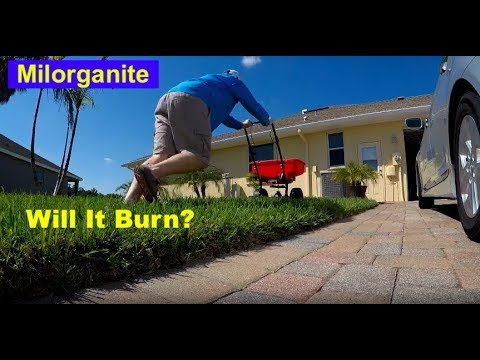 Milorganite Shortage, Milorganite Spillage - No Burn Bruh