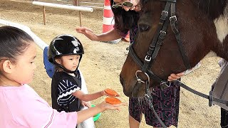 LoveStar have fun riding horse experience