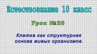 Естествознание 10 класс (Урок№20 - Клетка как структурная основа живых организмов.)
