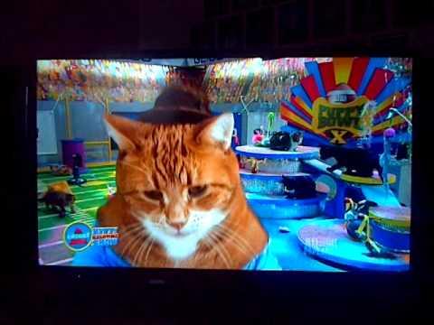 Keyboard Cat Kitten Bowl