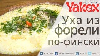 Уха по-фински из речной форели со сливками. Божественное блюдо, совсем не сложное в приготовлении.
