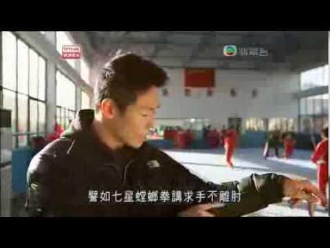 Tang Lang Quan The Mantis Art)   produced by Radio Television Hong Kong