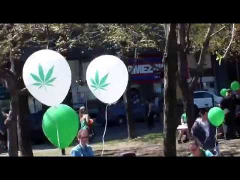 Montreal Global Marijuana March -1