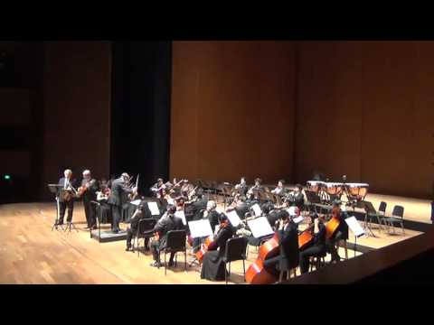 Mozart Sinfonia Concertante for violin, viola and orchestra in E flat, K. 364