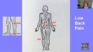 Pain Relief-Insomnia-Digestive-Sugar Issues using Acupressure Points