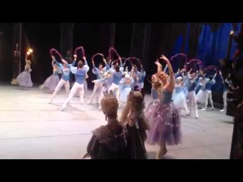 Sleeping beauty. Terada Ballet Art School & Kiev ballet