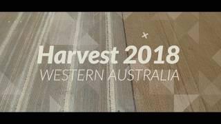 Western Australian Grain Harvest 2018 | By Drone [4K]