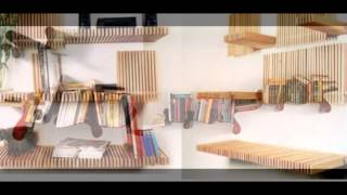 Contemporary  Bookshelves Designs Ideas