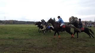 Wielka Potrzanowska - Hubertus Skoki 2016