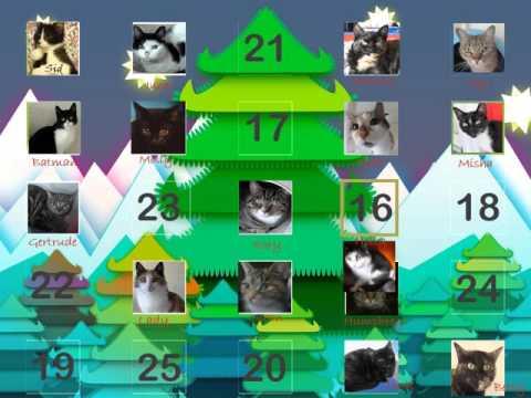 Cat Advent Calendar- Swansea Cats Protection