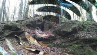 Parco Regionale del Partenio - Meraviglie dell'Irpinia - Trekking