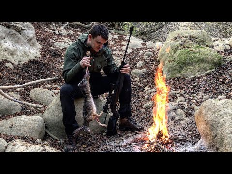 2 DAYS Alone Hunting Survival Hare In Natural Shelter - No Backpack Bushcraft Cooking