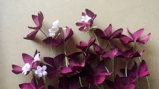 ABC TV | How To Make Purple Shamrock Paper Flower From Crepe Paper - Craft Tutorial