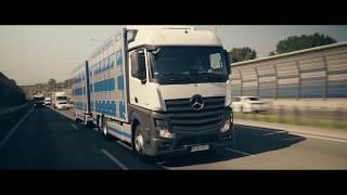 Sokołów Logistyka transport żywych zwierząt nowe pojazdy Mercedes