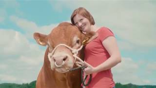 PATURA Unterwegs - Limousin Bulle Saphir