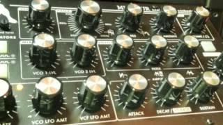 Moog Minitaur Groove