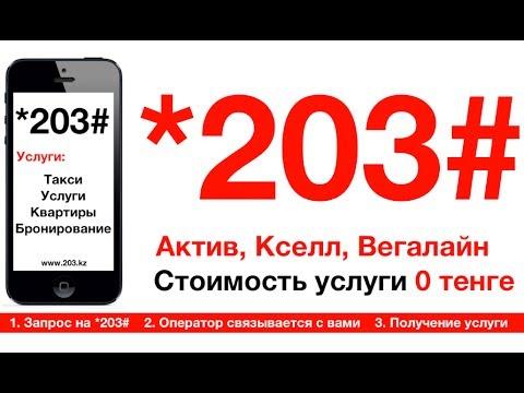 203 СЕРВИС В КАЗАХСТАНЕ