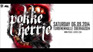 TerrorClown @ Pokke Herrie 2014
