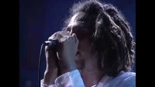 Rage Against the Machine - The Ghost Of Tom Joad - 7/24/1999 - Woodstock 99 East Stage (Official)