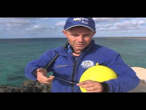 Surfacasting - Pesca con palloncino e vivo
