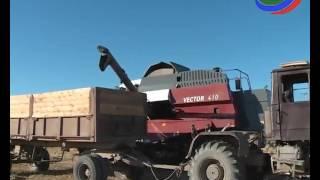 Дагестан стал рисовым лидером в стране