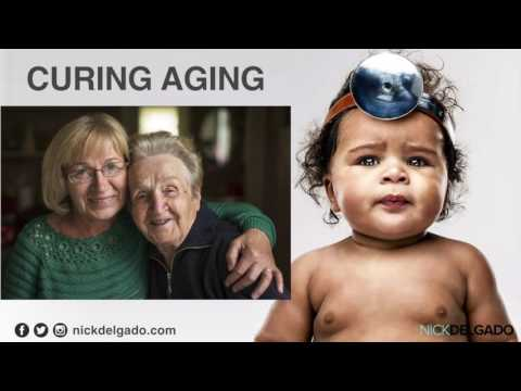 Immortality - Curing Disease & Aging, Telomeres, Stem Cells, Testosterone, Vegan Diet [Part 1]