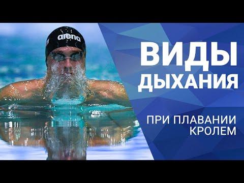 Плавание: новости, видео