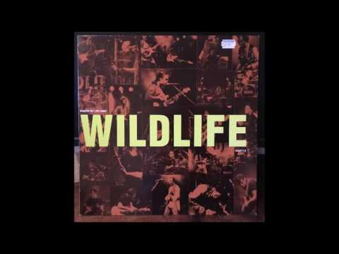 wildlife. danced my life away