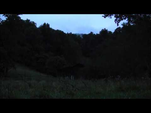 Night Time in the mountains - 10 hours of HD Frogs, Crickets, Cicadas and other insects.