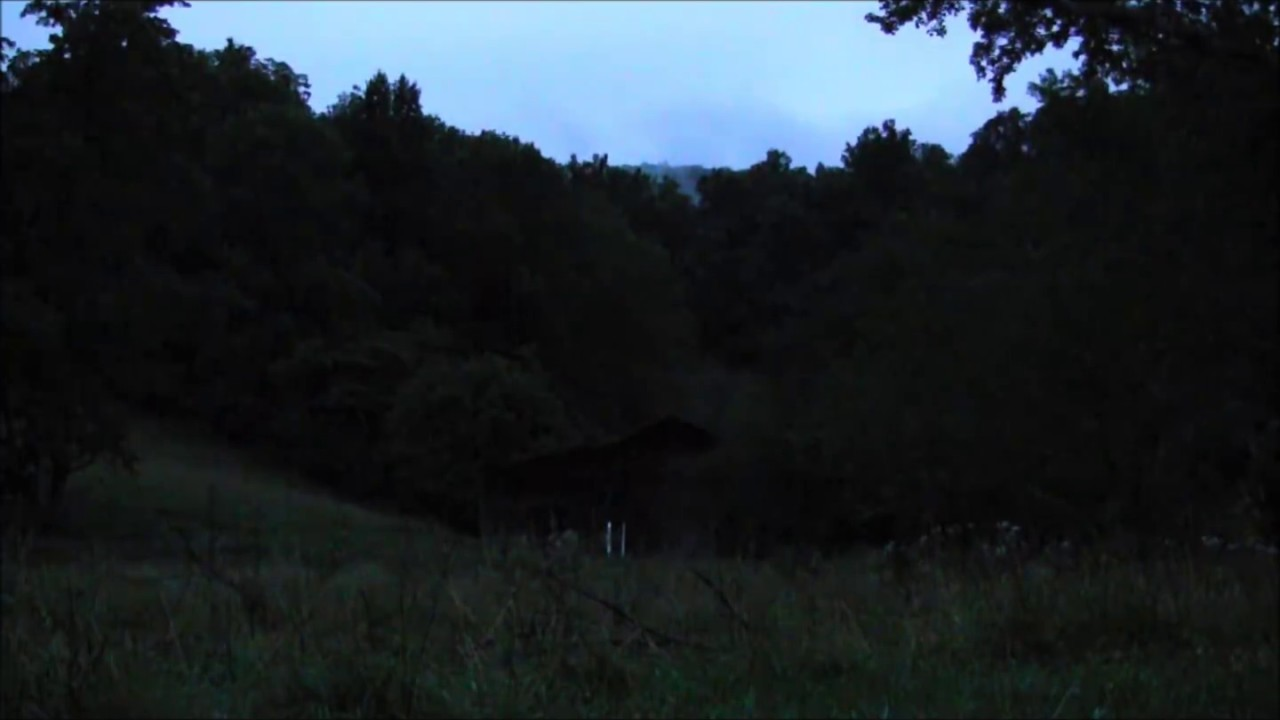 night time in the mountains 10 hours of hd frogs crickets