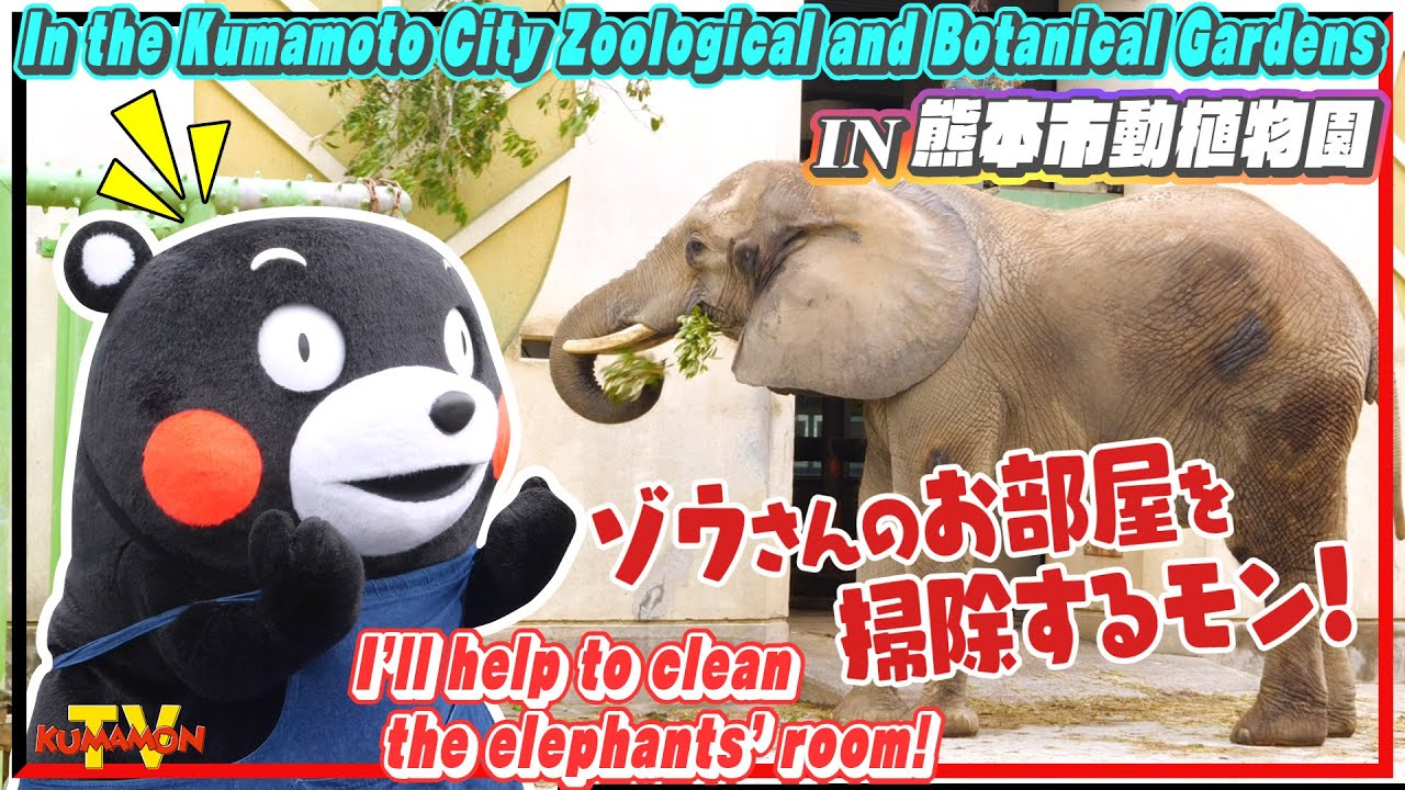 くまモンTV #141 くまモンのお手伝いin熊本市動植物園!ゾウさんのお部屋を掃除するモン!! ( Kumamon TV #141)