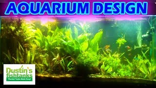 How To Set Up A Planted Aquarium Design. Desiging A Planted Tank Aquascape.