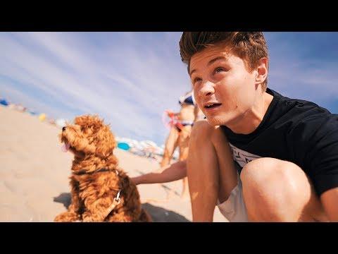 Mit Alfie und Kati zum Strand