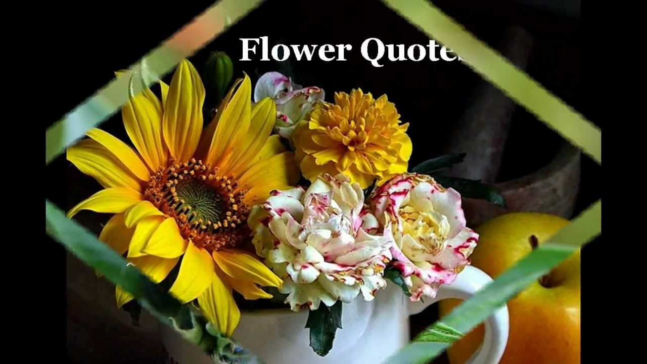 Flower quotes youtube flower quotes mightylinksfo
