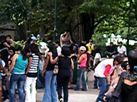 Dangdutan di Kowloon Park