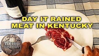 Kentucky Meat Shower The Day It Rained Mystery Meat