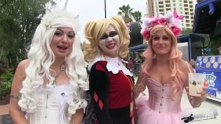Cosplay Models - 2016 Tampa Bay Comic Con
