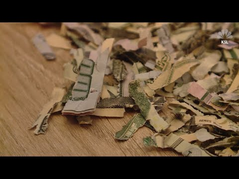 Brian Fink - 2-Year-Old Shreds $1000 That Parents Had Saved
