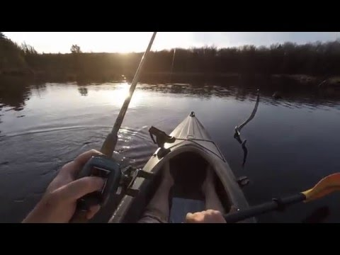 Northern Pike Action On Top Water Lures In The Adirondacks