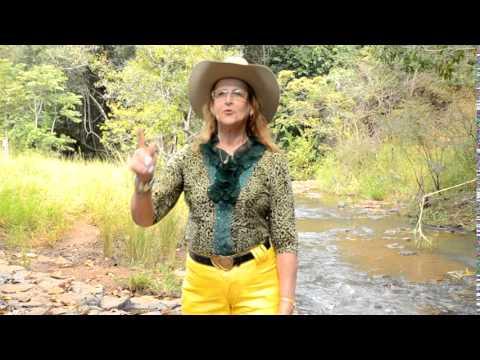 Licionina Barreto - Estas Águas Cristalinas