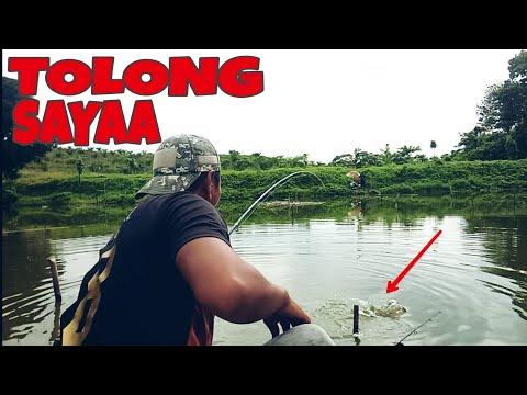 SAMPAI KEWALAHAN || Strike Berkali-Kali Ikan Nila
