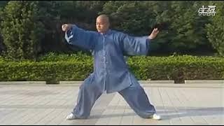 完美的 陈式太极拳老架一路 Once of the best Chen Style Old Form Tai Chi Quan