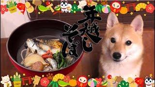 犬用「年越しそば」を食べてみたら悲惨なことになった年末の日 thumbnail