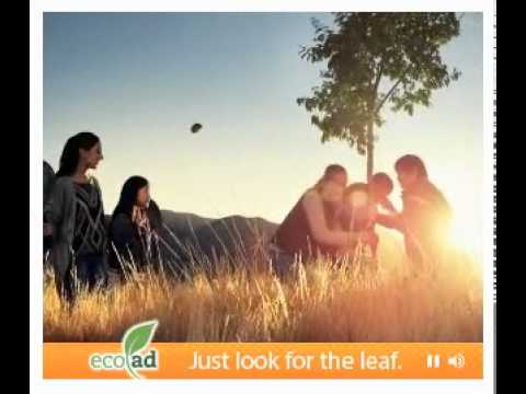 Web Project Management Work - Eco Media Eco Ad Commercial (CBS Interactive)