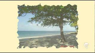 Island of Porao, Roxas, Palawan...for Sale...