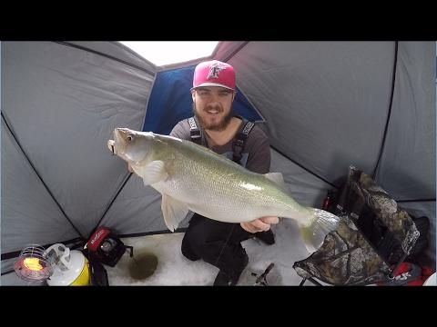 Dropping rods and catching hogs lake winnipeg youtube for Lake winnipeg fishing report