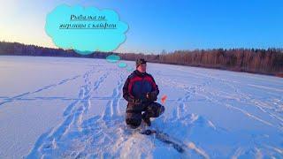 Путешествие в тайгу День 2 Рыбалка на жерлицы в мороз Первый лед 2020 2021