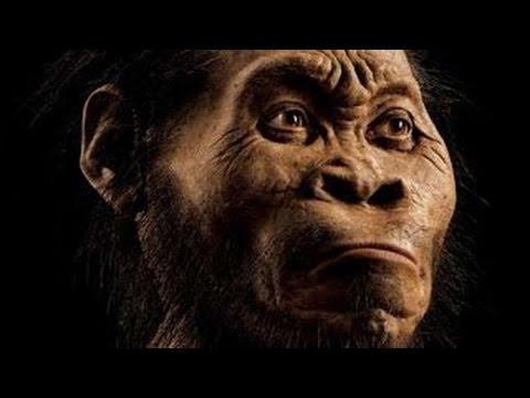 NOVA Science Documentary   -  Dawn of Humanity