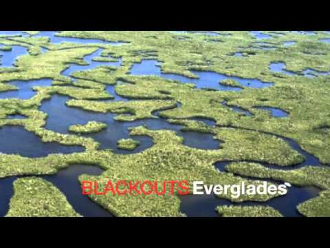 BLACKOUTS - EVERGLADES