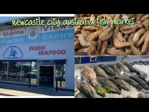 Fish Market Newcastle City Australia